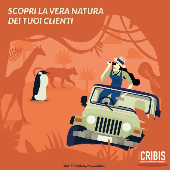 zilla visual design per Icribis